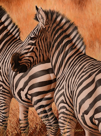Before and After (Zebras) by Robert Caldwell