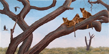 Constant Caution (Lions) by Robert Caldwell
