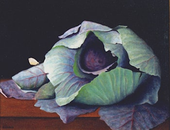 Cabbage and Butterfly by Sandy Sherman