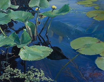 Spatterdock & The Alien by John Buxton