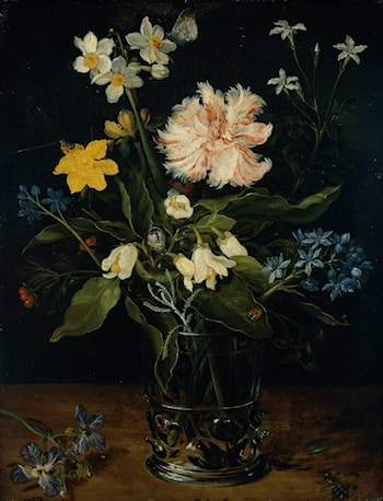 Still Life with Flowers in a Glass by Jan the elder Brueghel