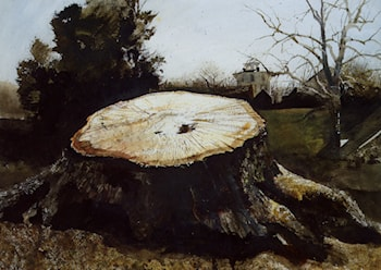 The Big Oak by Andrew Wyeth