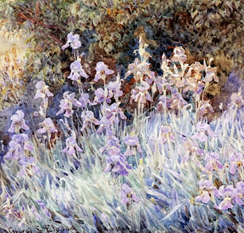 Irises In A Garden by George Samuel Elgood