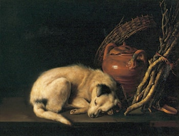 Sleeping Dog with Terracotta Jug, Basket and Kindling Wood by Gerrit Dou