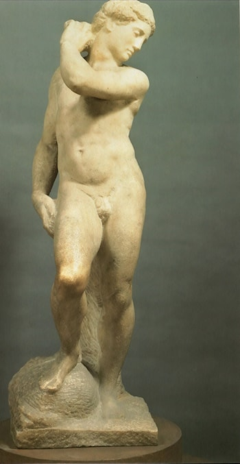 DavidApollo by Michelangelo