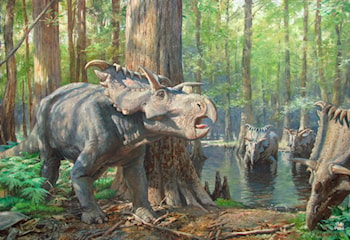 Kosmoceratops by James Gurney