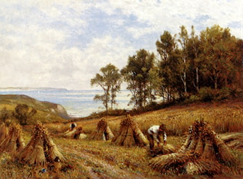 In The Cornfields, Near Luccombe, Isle Of Wight by Alfred Augustus Glendening