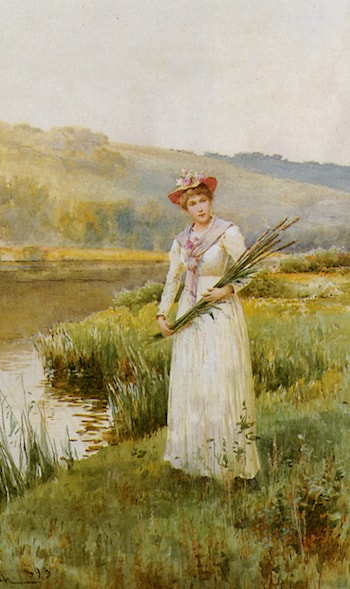Across the Meadow by Alfred Glendening