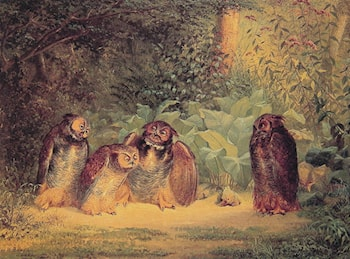 Owls by William Holbrook Beard