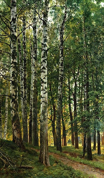 Birch Grove by Ivan Shishkin