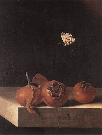 Three Medlars with a Butterfly by Adriaen Coorte