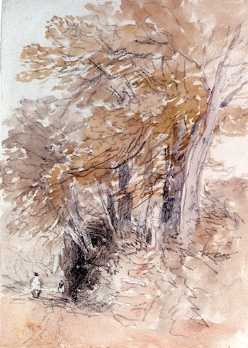 Tree­Lined Lane With Steep Banks by David Cox