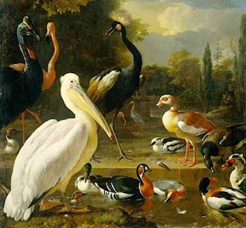 Birds in a Park by Melchior de Hondecoeter