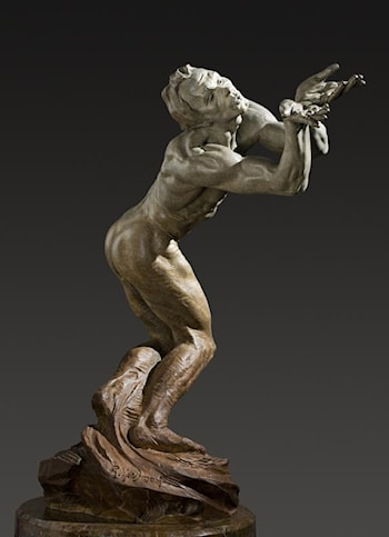 Butterfly, Half Life by Richard MacDonald