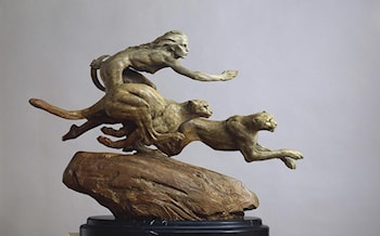Diana and The Coursing Cheetahs by Richard MacDonald
