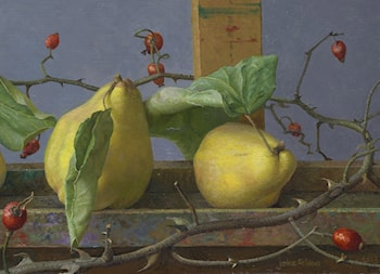 Quinces With Rosehips by Joke Frima