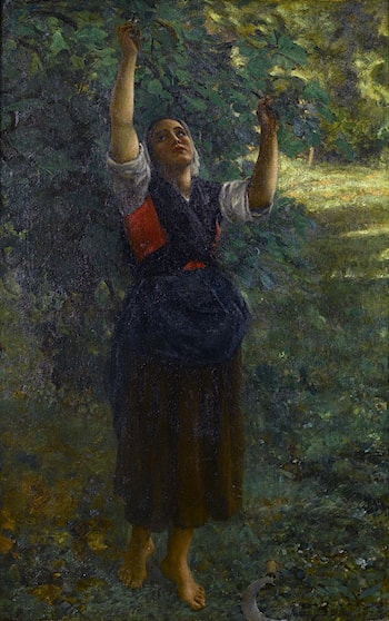 Cueilleuse de figues by Jules-Adolphe Breton