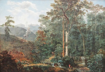View of a Forest being Turned into Charcaol by Felix Emile Taunay