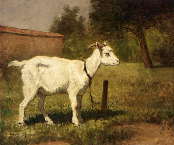 A Goat In A Meadow by Henriette Ronner-Knip