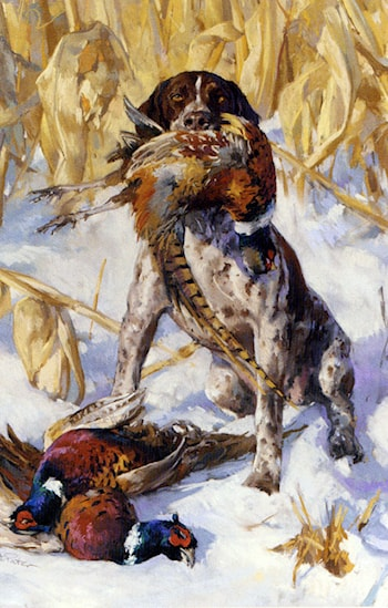 A Pointer And A Pheasant by Andre Pater