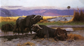 Buffalo Along the Riverbank by Wilhelm Kuhnert