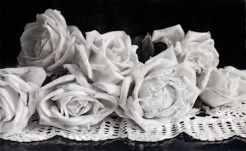 Tired Roses by Gordon Hanley