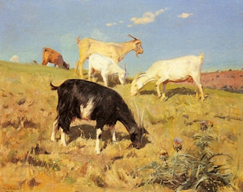 Goats Grazing on a Hillside by Benito Rebolledo Correa