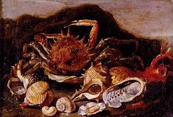Still Life Of A Crab, Shells And Coral In A Landscape by Paolo Porpora