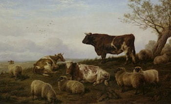 Cattle and Sheep Resting by Charles Jones