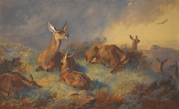 The Watchful Hinds by Archibald Thorburn