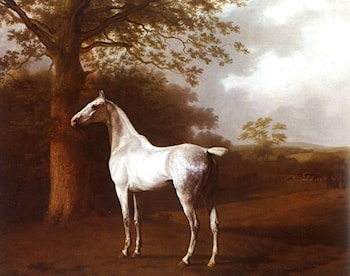 White Horse in Pasture by Jacques-Laurent Agasse