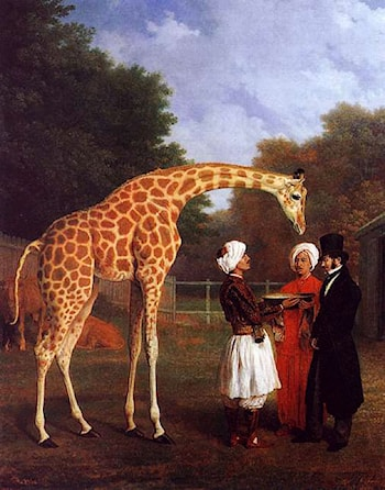 The Nubian Giraffe by Jacques-Laurent Agasse