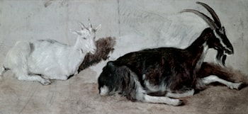 Two Goats by Jacques-Laurent Agasse
