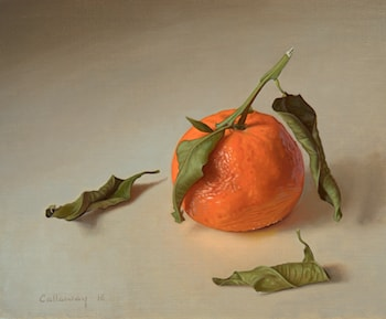 Clementine in Decay by Alex Callaway