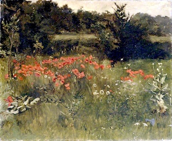Poppies by Sarah Paxton Ball Dodson