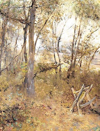 A Wood by Sarah Paxton Ball Dodson