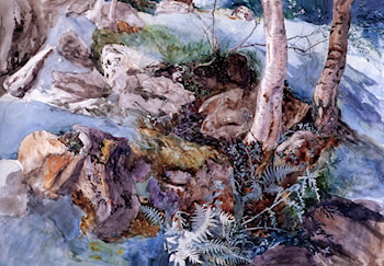 Study of the Rocks and Ferns, Crossmouth by John Ruskin