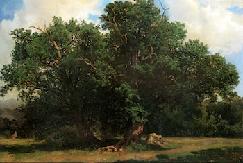 Oak Trees by Johannes Bosboom
