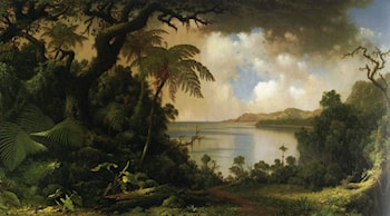View from Fern Tree Walk, Jamaica by Martin Johnson Heade