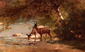 Deer in a Landscape by Thomas Hill