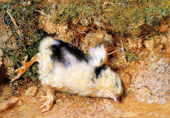 John Ruskin's dead chick by William Henry Hunt