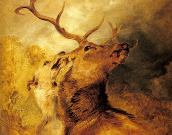 Stag and Hound by Sir Edwin Henry Landseer