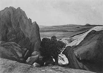 Near Last Camp on Ross Fork, Snake River, Lander Wagon Road, Oregon by Henry Hitchings