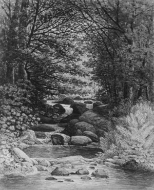 A Forest Cascade at Hiram, Maine by Henry Hitchings