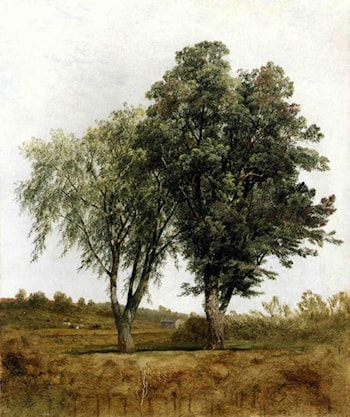 A Study of Trees by John Frederick Kensett